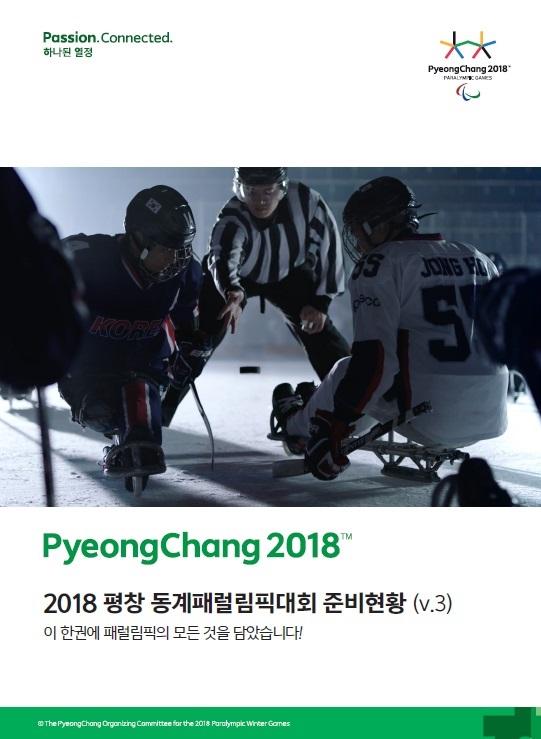 2018 패럴림픽 준비현황
